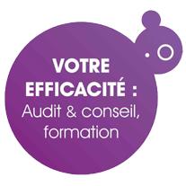 Votre efficacité - Audit, conseil & formation