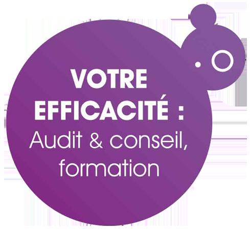 Audit et conseil informatique - Le Conseil Informatique